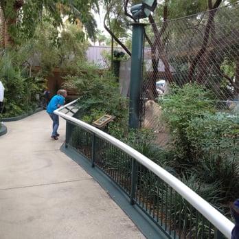 Siegfried Roy S Secret Garden And Dolphin Habitat 900 Photos 305 Reviews Las Vegas Nv