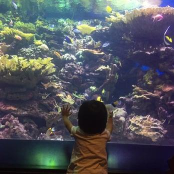 The New York Aquarium 404 Photos 301 Reviews Zoos