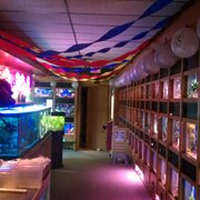 the fish factory pet stores west allis milwaukee wi