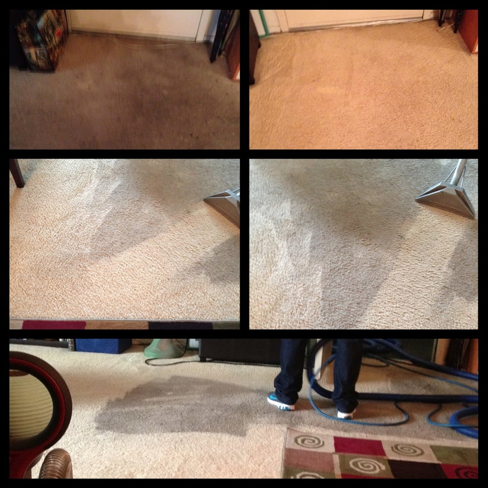 So White Carpet Cleaning - 63 Photos - Nettoyage de tapis ...