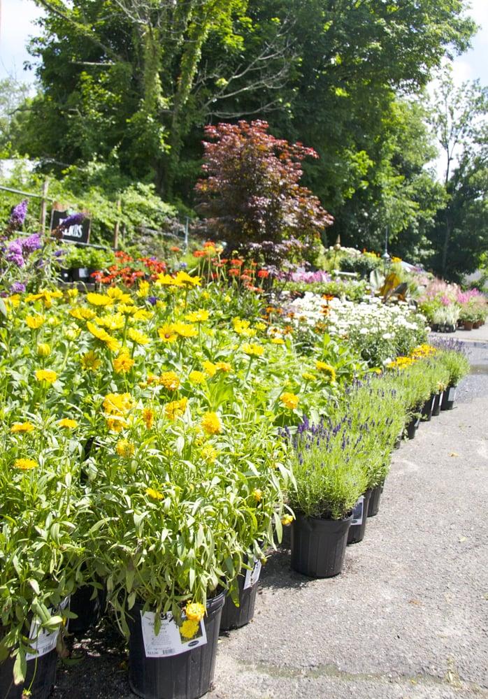 Copia Home And Garden Gardening Centres 475 Smith