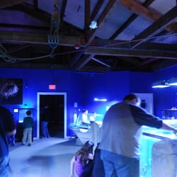 Portland Aquarium Aquariums Milwaukie Or Reviews