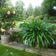 Botanischer Garten Potsdam, Potsdam, Brandenburg, Germany