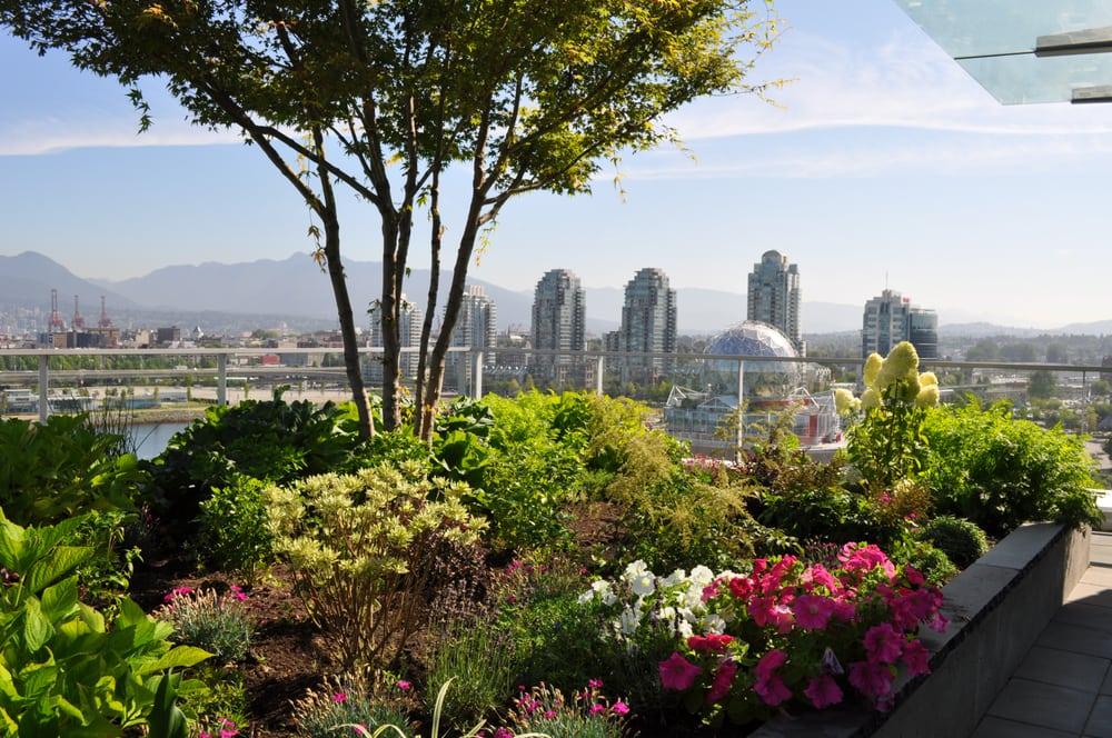 Dehaas landscaping design landscape architects for Garden design vancouver
