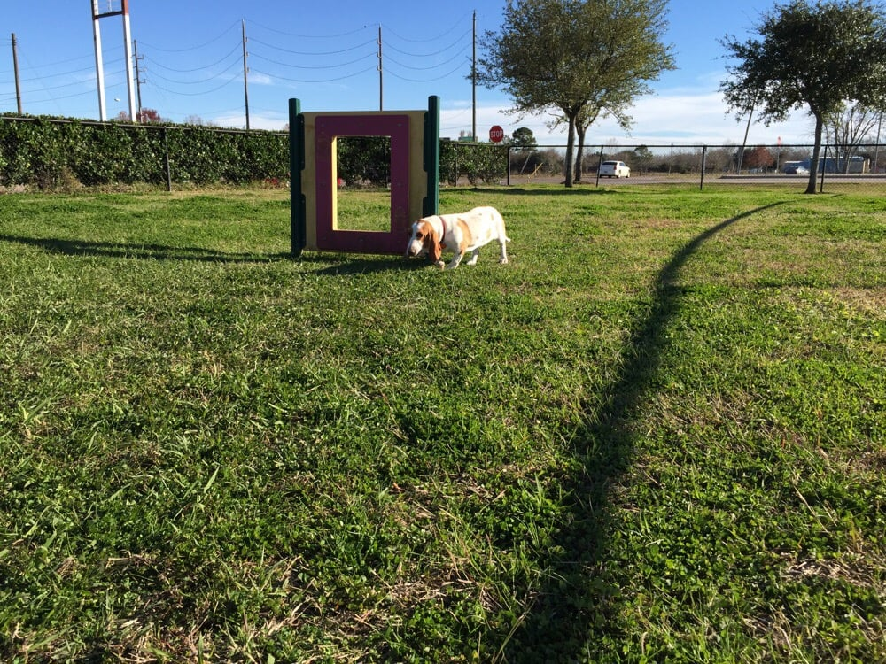 Dog Park Pearland Tx