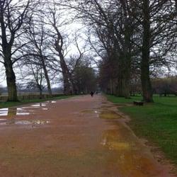 Christchurch Meadows, Oxford