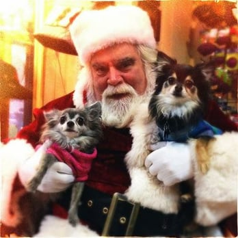 Follow your nose 85 photos pet stores 917 chicago ave follow your nose evanston il united states pet pictures with santa solutioingenieria Image collections