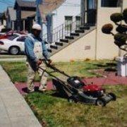 All Seasons Gardening & Landscaping Services - Lawn maintenance work in San Francisco. - San Francisco, CA, Vereinigte Staaten