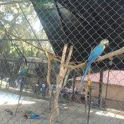 Jardim Zoológico, Rio de Janeiro - RJ