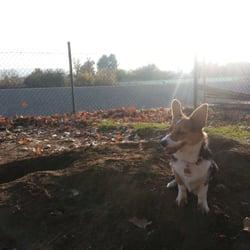 Sepulveda Basin Off Leash Dog Park