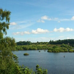 RSPB Fairburn Ings, Knottingley, North Yorkshire