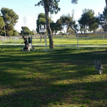 Dog Park In Lakewood Ca