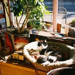 Cat and Cannon Books - Seattle, WA, Vereinigte Staaten