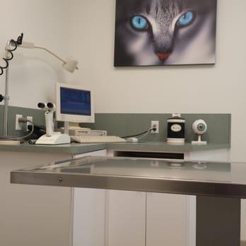 Animal Eye Specialty Clinic Deerfield Beach Fl