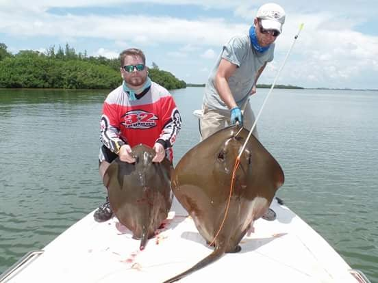 Aim lower bow fishing charters archery punta gorda fl for Punta gorda fishing