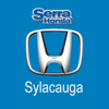 Serra Honda: Fuel System Cleaning