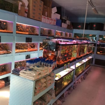 Pet supplies near me disaster preparedness communication for Fish stores around me