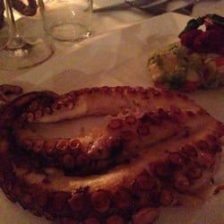 The grilled octopus.