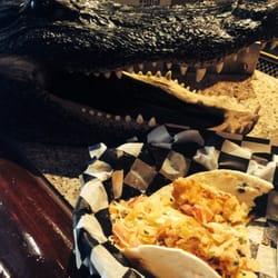 The tin fish restaurant sarasota fl yelp for Tin fish restaurant