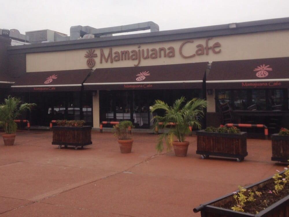 Photos for Mamajuana Cafe Queens | Yelp