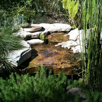The Natural Gardener Austin Tx United States The Water Feature In The Butterfly Garden 11 6 10