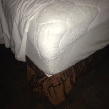 Grand Mound Great Wolf Lodge Bed Bugs