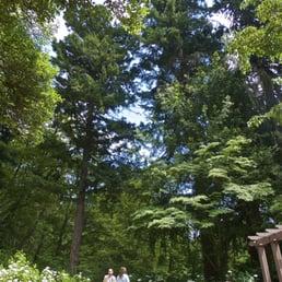 Photos for Leach Botanical Garden Yelp