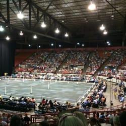 NRG Arena - Gala of The Horses- intermission - Houston, TX, Vereinigte Staaten