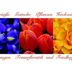 Stiegler und Behrendt Blumeneinzelhandels GmbH, Berlin