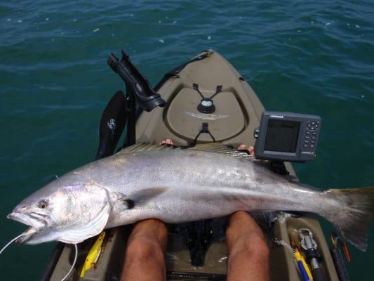 Marina kayak fishing center closed fishing 13464 for Marina del rey fishing report