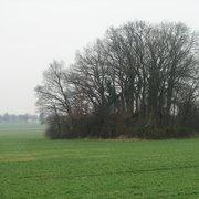 Kummerhaufen, Nienstädt, Niedersachsen