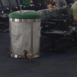 Abica Coffee Newark Airport