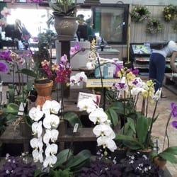 Armstrong Garden Centers Nurseries Gardening San Diego Ca Yelp