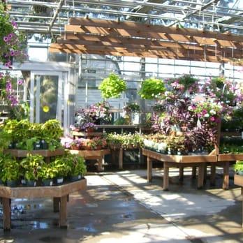 Mcdonald Garden Center 23 Photos Gardening Centres Virginia Beach Va United States