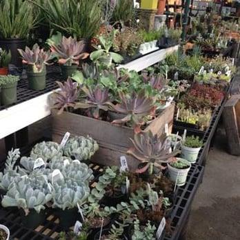 Telly S Greenhouse And Garden Center 12 Photos 23 Reviews Nurseries Gardening 3301