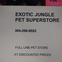 exotic jungle pet stores morgantown wv reviews photos yelp. Black Bedroom Furniture Sets. Home Design Ideas
