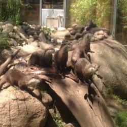 Zoo Vivarium, Darmstadt, Hessen