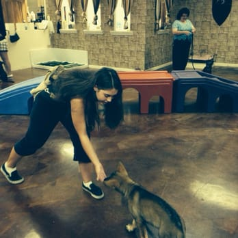Dog obedience classes los angeles ca
