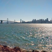 San Francisco International Dragon Boat Festival - View of San Francisco downtown and Bay Bridge from Treasure Island - San Francisco, CA, Vereinigte Staaten