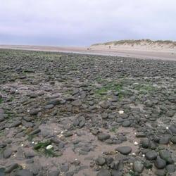 Aberdyfi Sand Dunes, Aberdovey, Gwynedd