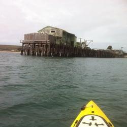 Half moon bay kayak company rafting kayaking half for Half moon bay pier fishing