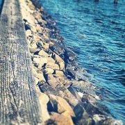Solomons Island Vacation Rentals