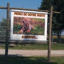 parc des felins, Lumigny Nesles Ormeaux, Seine-et-Marne