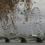 The London Eye spied from behind Houses of Parliament, Victoria Tower Gardens, grey day, cold to the core