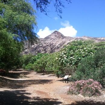 Koko Crater Botanical Garden 285 Photos 50 Reviews