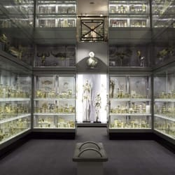 Crystal Gallery, Hunterian Museum - London