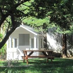 elk grove preschool tree preschool elk grove ca united states 316