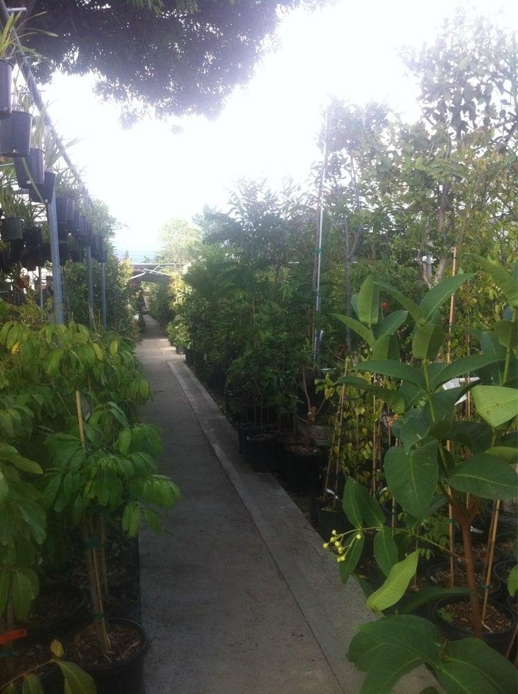 Temple Garden Center Gardening Centres 11314 Lower Azusa Rd El Monte Ca United States