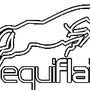 Equiflair