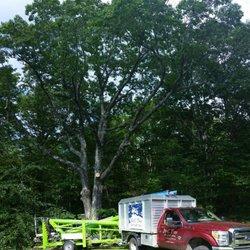 Photo of J u0026 C Tree Service - Fryeburg ME United States. & J u0026 C Tree Service - 22 Photos - Tree Services - 118 Mountain View ...